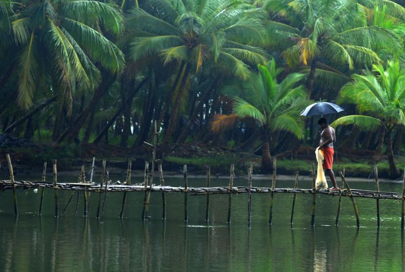 coorg-travel-places-near-bangalore